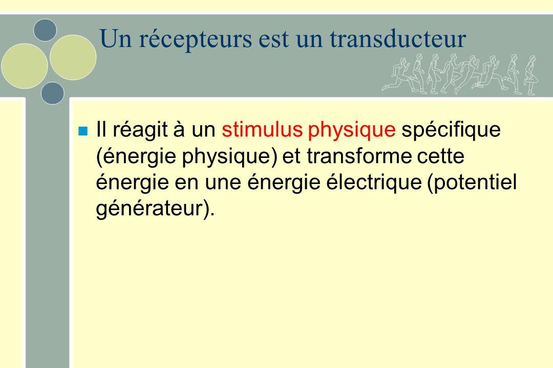 Un récepteurs est un transducteur