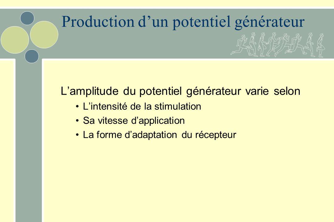 Production d'un potentiel générateur