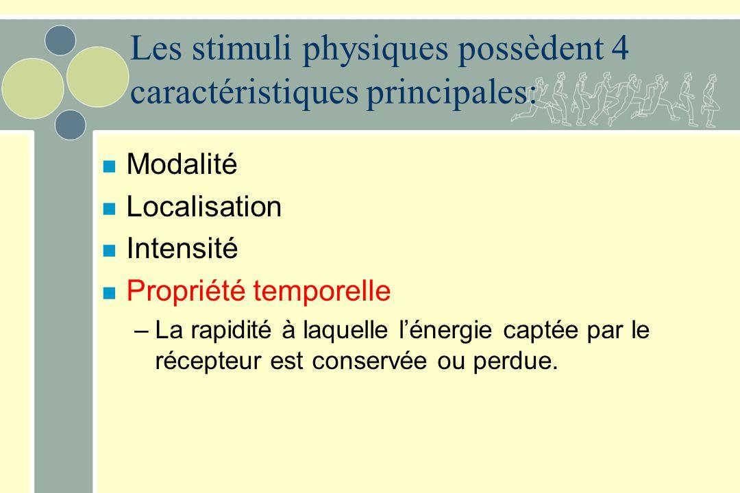 Les stimuli physiques possèdent 4 caractéristiques principales: