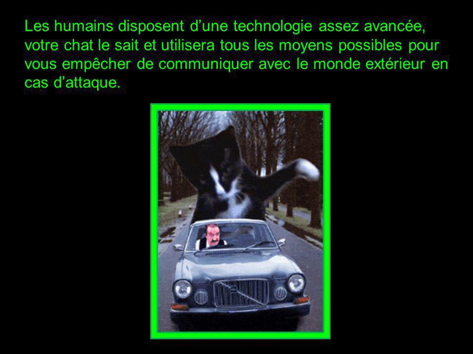 Les humains disposent d'une technologie assez avancée, votre chat le sait et utilisera tous les moyens possibles pour vous empêcher de communiquer avec le monde extérieur en cas d'attaque.