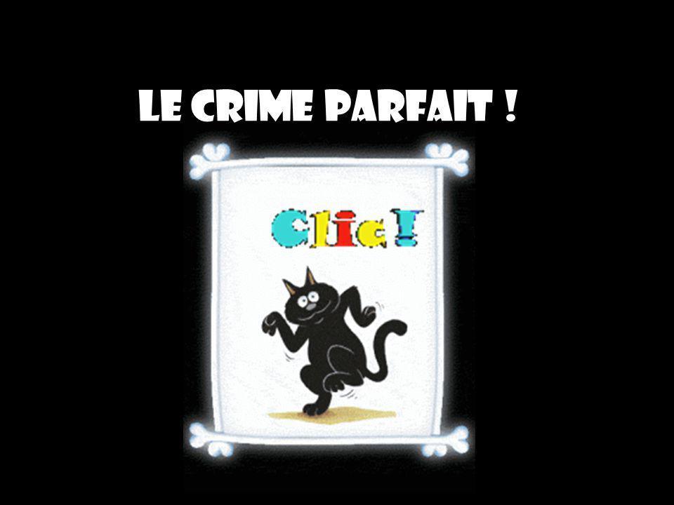 Le crime parfait !