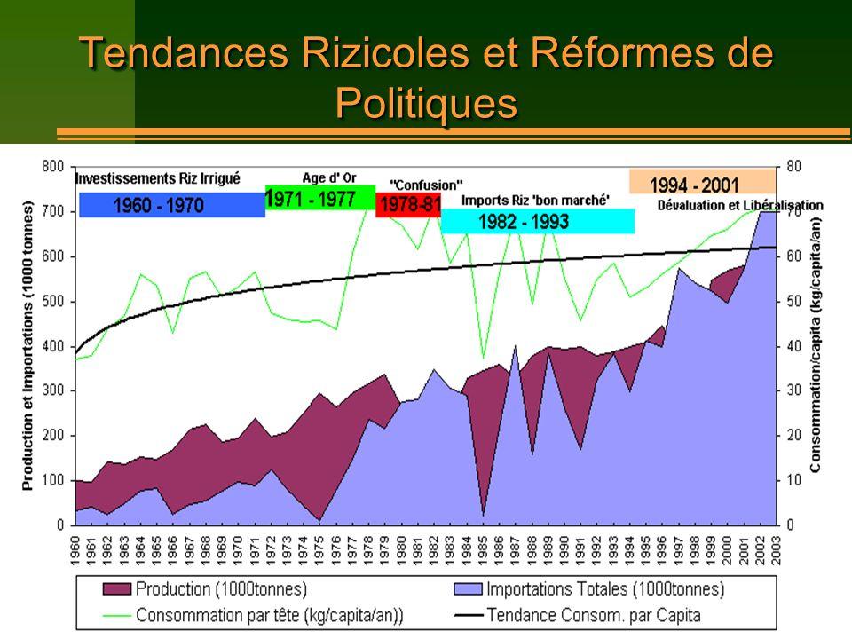 Tendances Rizicoles et Réformes de Politiques