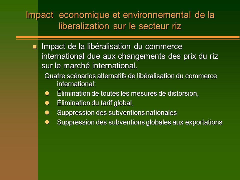 Impact economique et environnemental de la liberalization sur le secteur riz