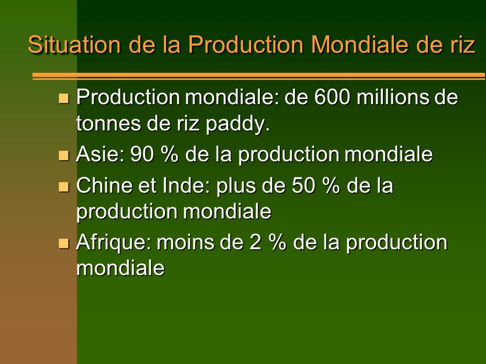 Situation de la Production Mondiale de riz