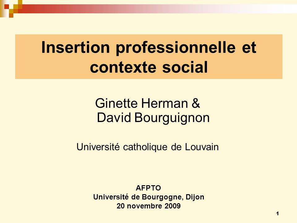 Insertion professionnelle et contexte social