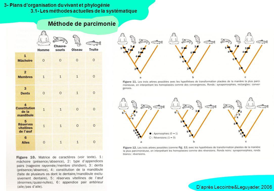 Méthode de parcimonie 3- Plans d'organisation du vivant et phylogénie