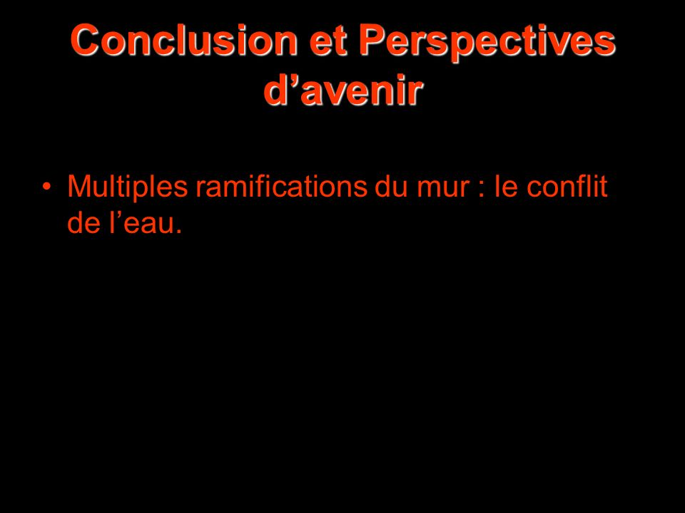 Conclusion et Perspectives d'avenir