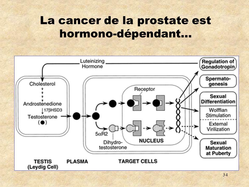 La cancer de la prostate est hormono-dépendant…