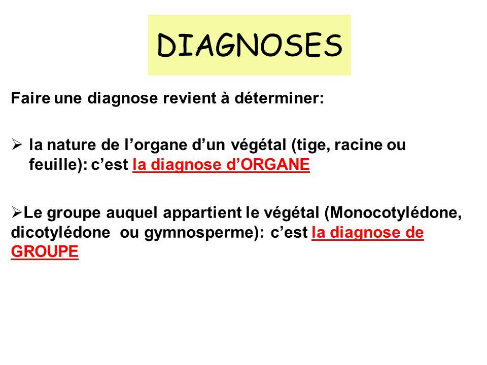 DIAGNOSES Faire une diagnose revient à déterminer: