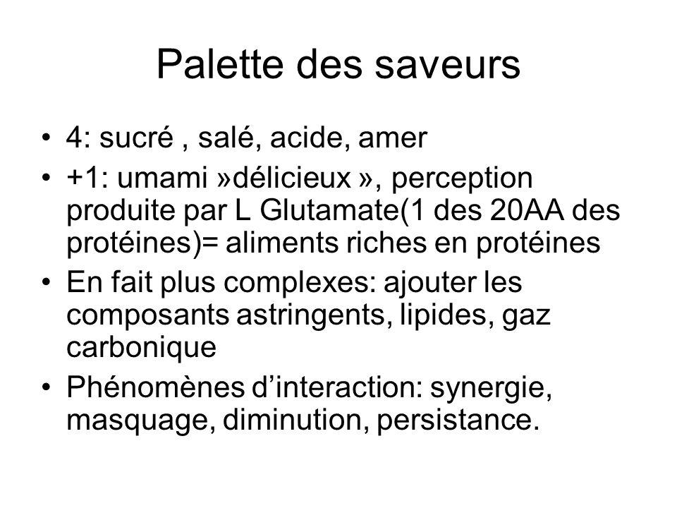 Palette des saveurs 4: sucré , salé, acide, amer