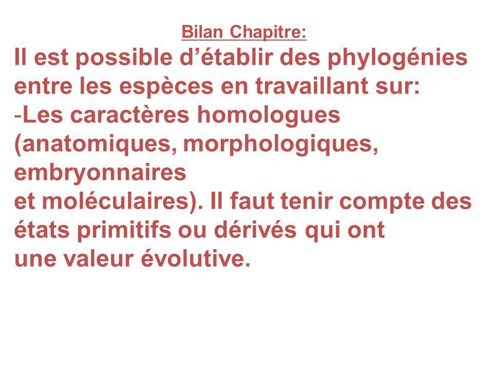 Les caractères homologues (anatomiques, morphologiques, embryonnaires