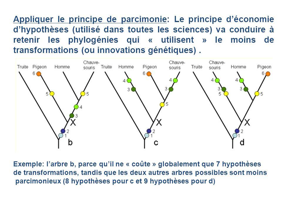 Appliquer le principe de parcimonie: Le principe d'économie d'hypothèses (utilisé dans toutes les sciences) va conduire à retenir les phylogénies qui « utilisent » le moins de transformations (ou innovations génétiques) .