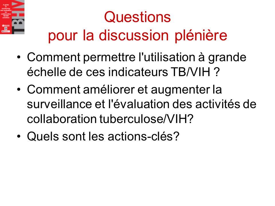 Questions pour la discussion plénière
