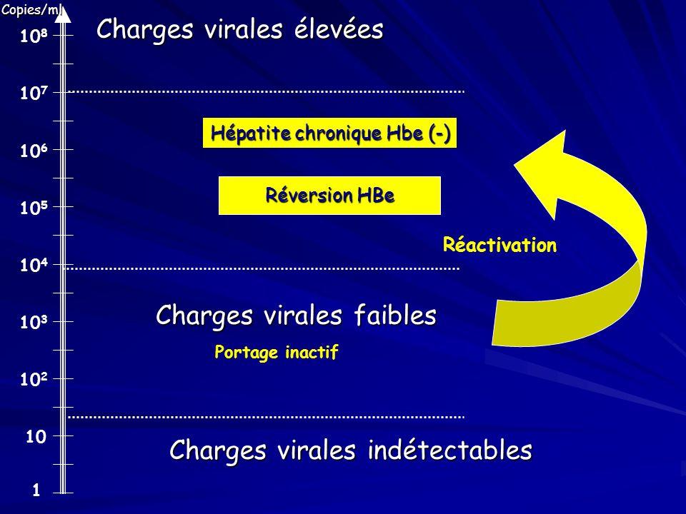 Hépatite chronique Hbe (-)