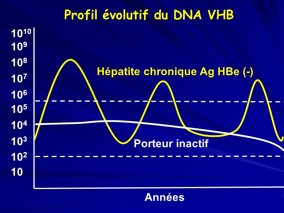 Profil évolutif du DNA VHB