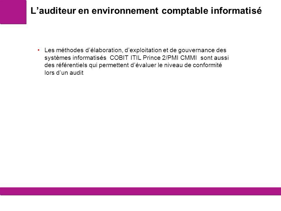 L'auditeur en environnement comptable informatisé