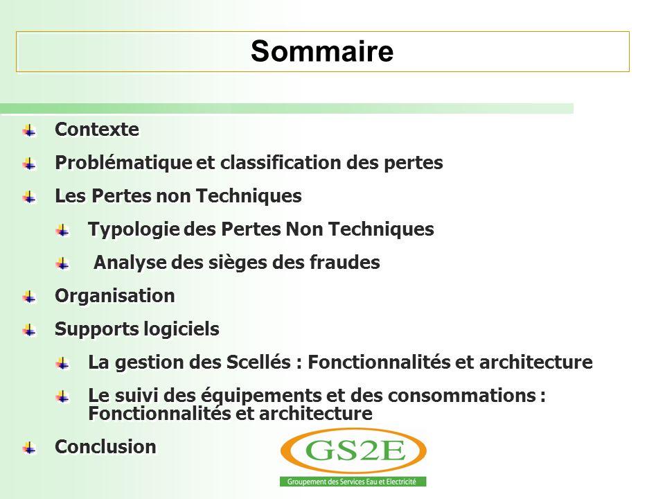 Sommaire Contexte Problématique et classification des pertes