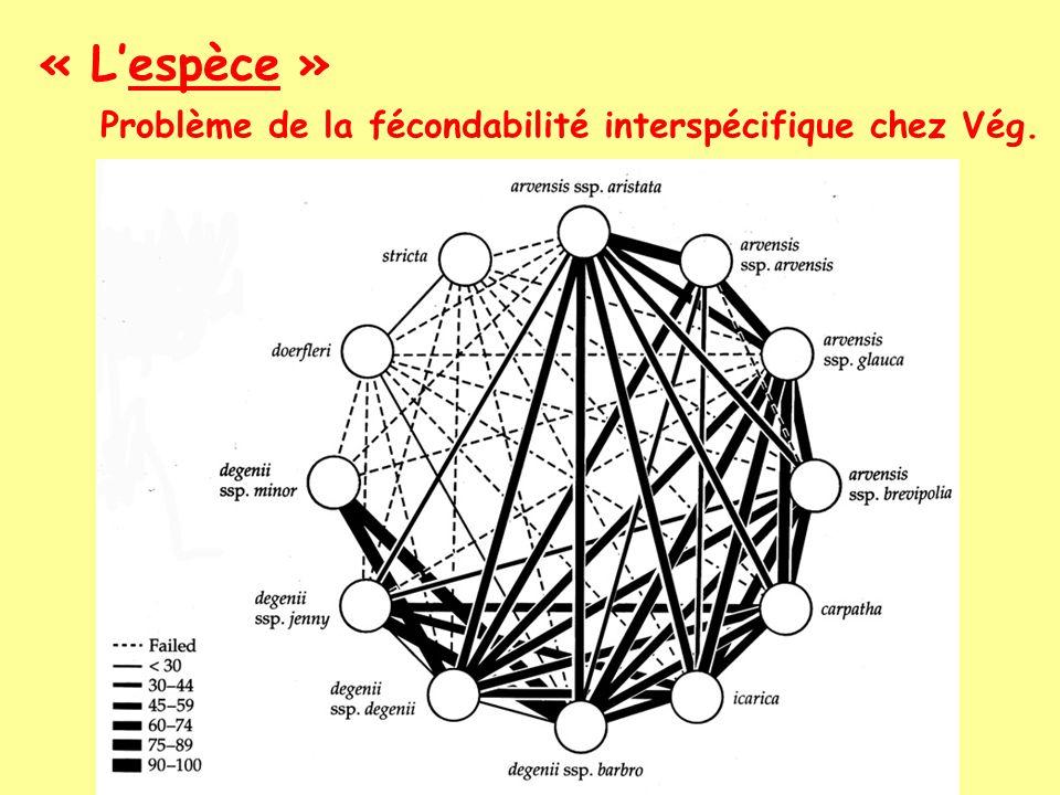 « L'espèce » Problème de la fécondabilité interspécifique chez Vég.