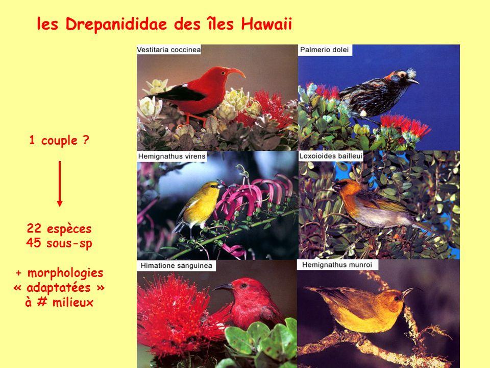 les Drepanididae des îles Hawaii