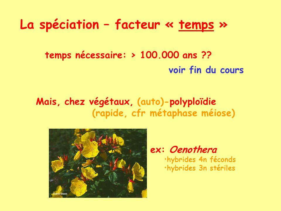 La spéciation – facteur « temps »