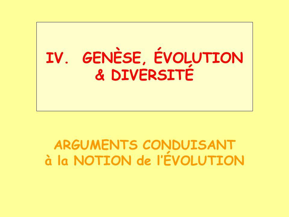 IV. GENÈSE, ÉVOLUTION & DIVERSITÉ