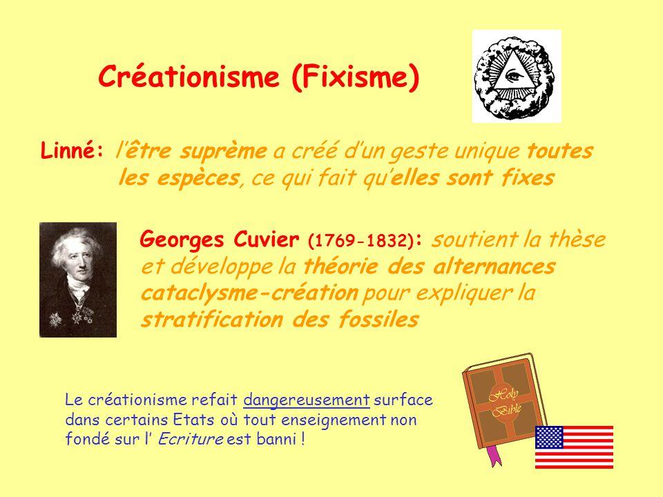 Créationisme (Fixisme)