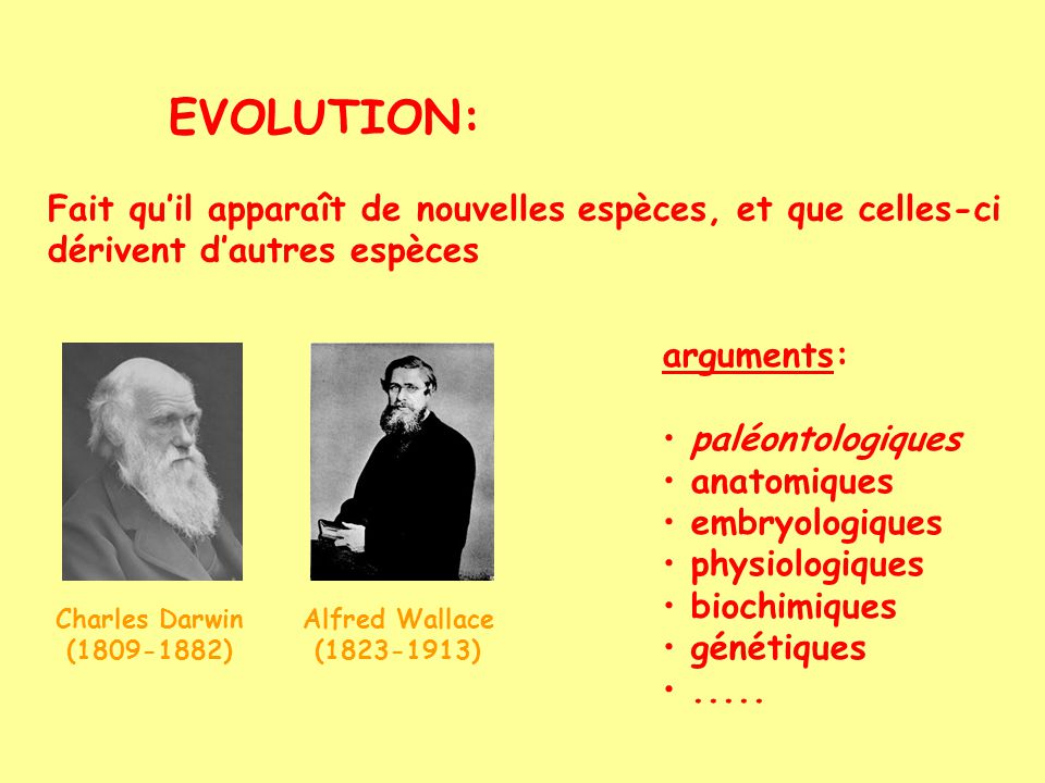 EVOLUTION: Fait qu'il apparaît de nouvelles espèces, et que celles-ci dérivent d'autres espèces. arguments: