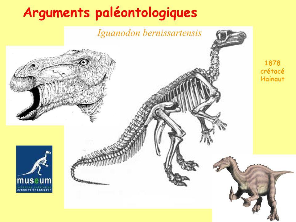 Arguments paléontologiques