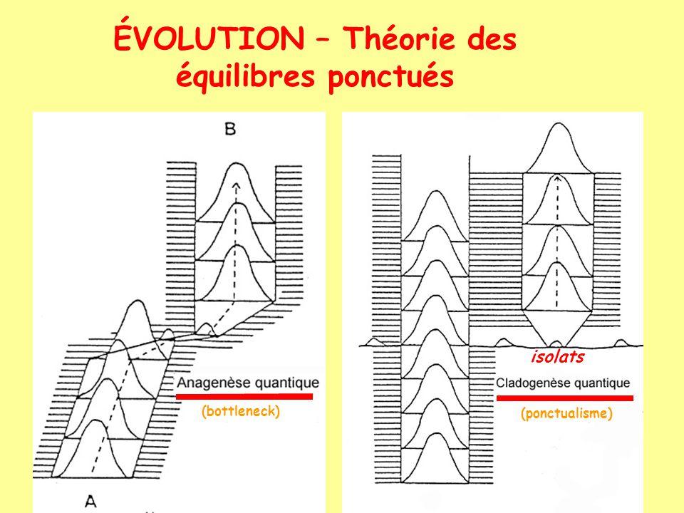 ÉVOLUTION – Théorie des