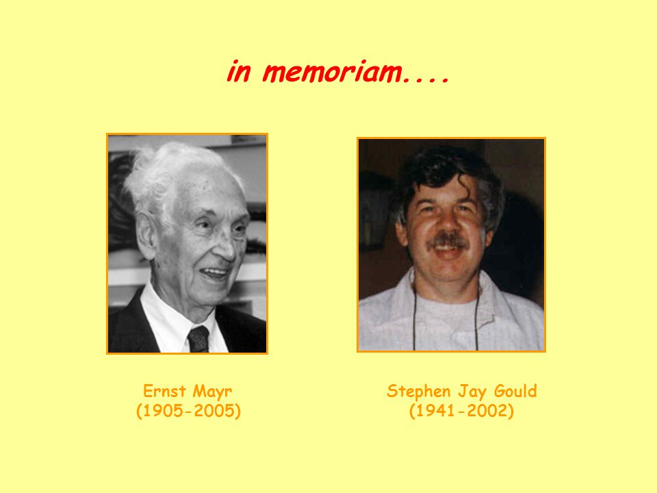 in memoriam.... Ernst Mayr (1905-2005) Stephen Jay Gould (1941-2002)