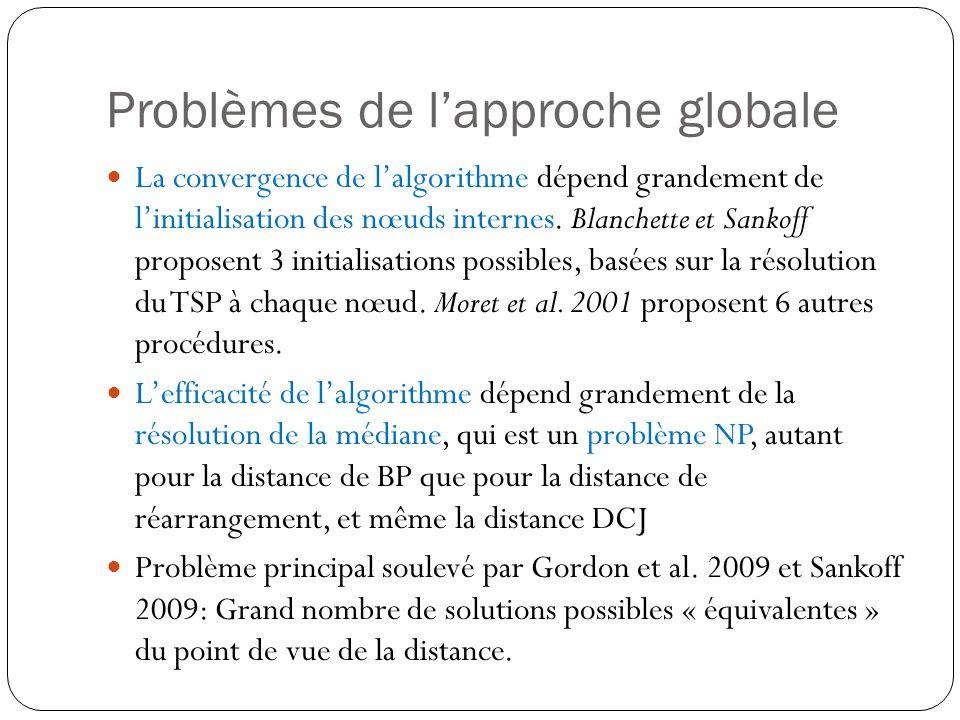 Problèmes de l'approche globale