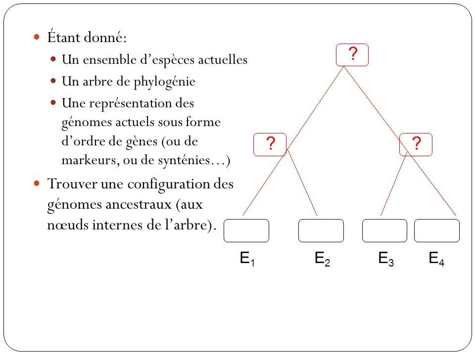 Étant donné: Un ensemble d'espèces actuelles. Un arbre de phylogénie.