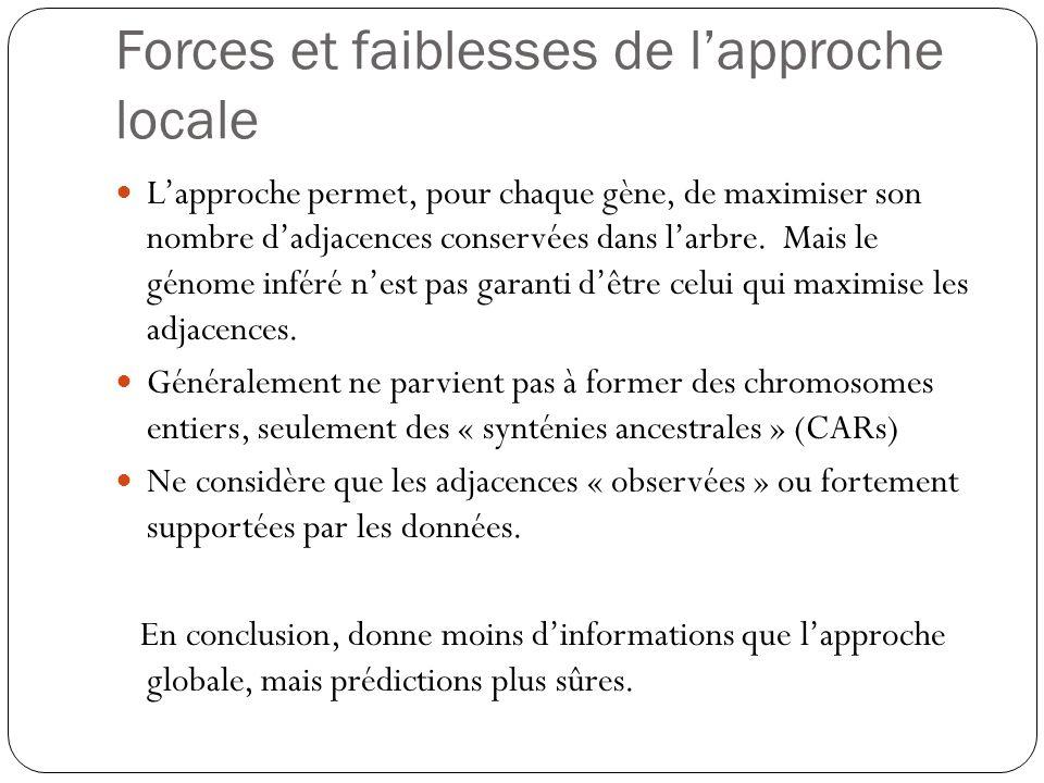 Forces et faiblesses de l'approche locale