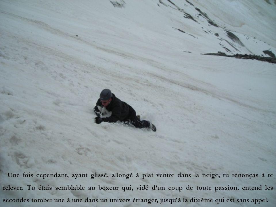 Une fois cependant, ayant glissé, allongé à plat ventre dans la neige, tu renonças à te relever.