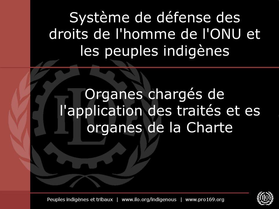 Système de défense des droits de l homme de l ONU et les peuples indigènes