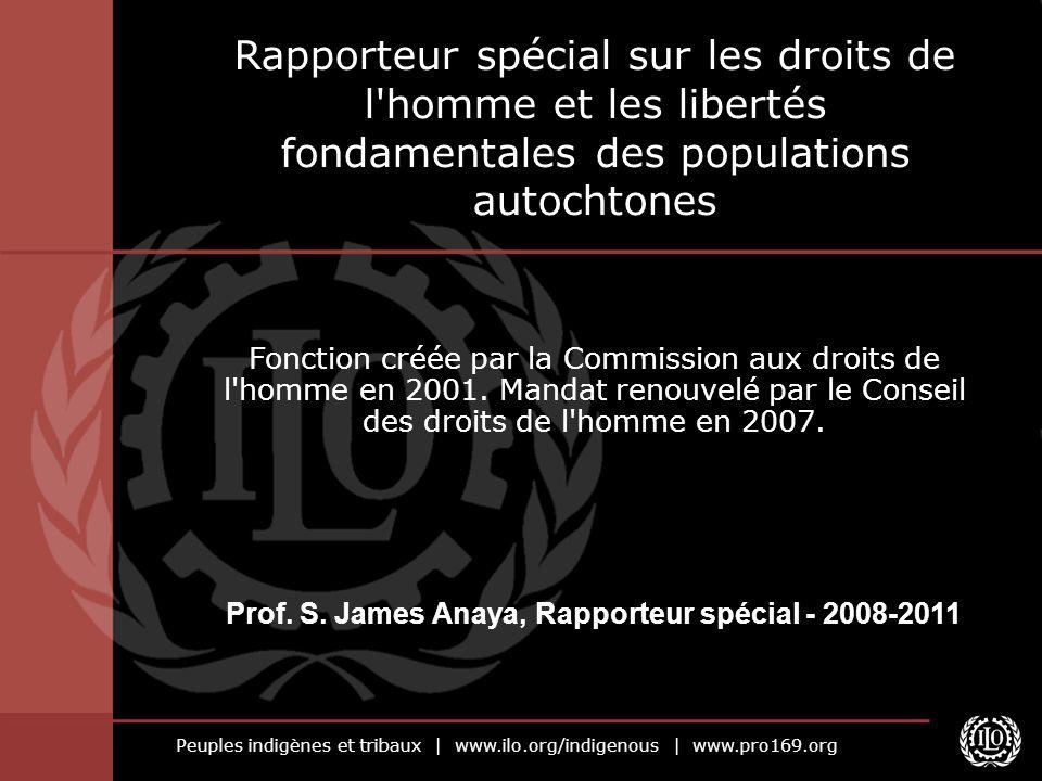 Prof. S. James Anaya, Rapporteur spécial - 2008-2011
