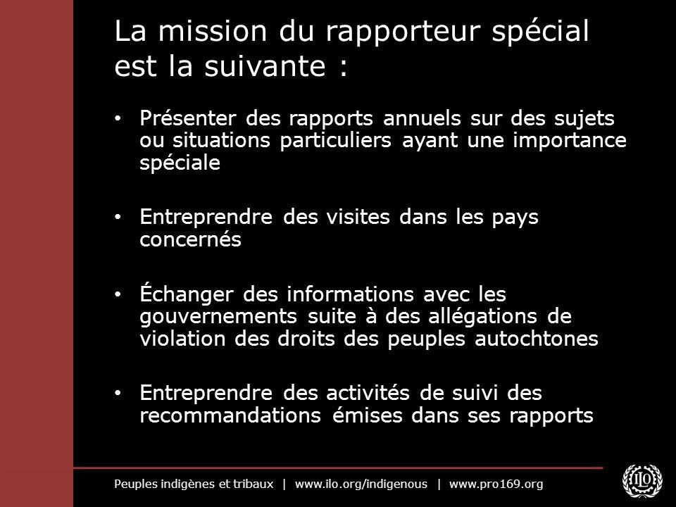 La mission du rapporteur spécial est la suivante :