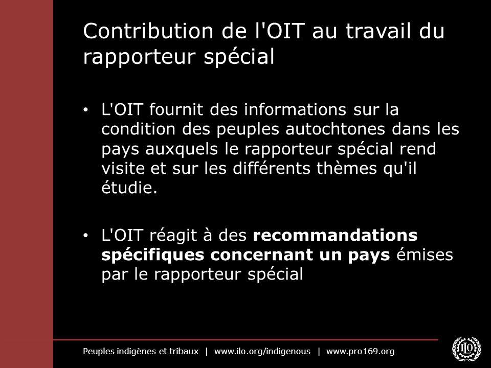 Contribution de l OIT au travail du rapporteur spécial
