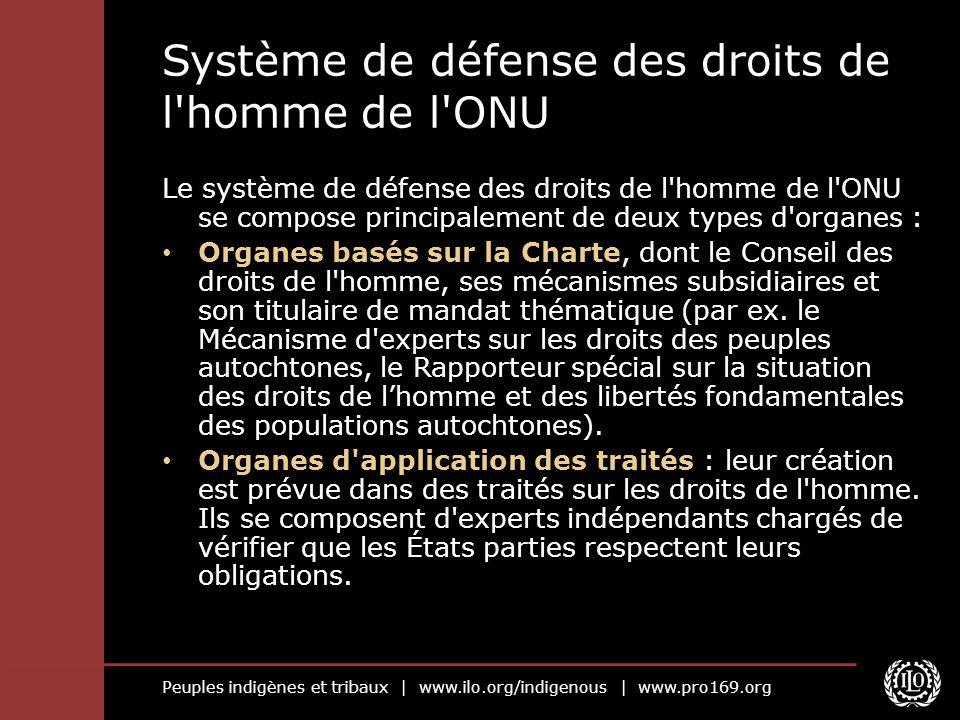 Système de défense des droits de l homme de l ONU
