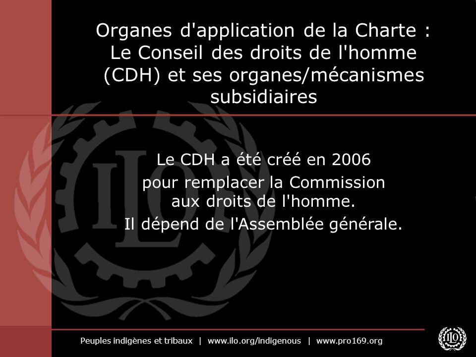 Organes d application de la Charte : Le Conseil des droits de l homme (CDH) et ses organes/mécanismes subsidiaires