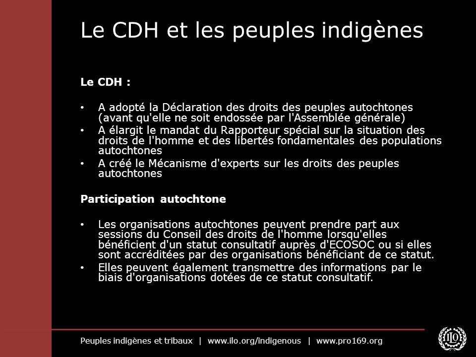Le CDH et les peuples indigènes