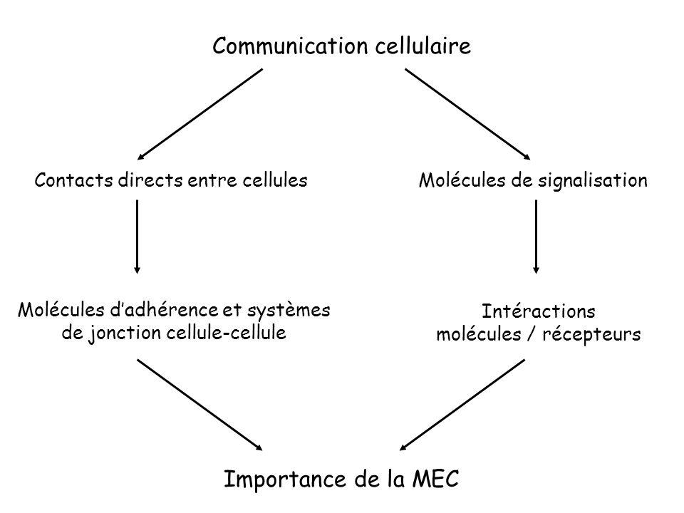 Communication cellulaire