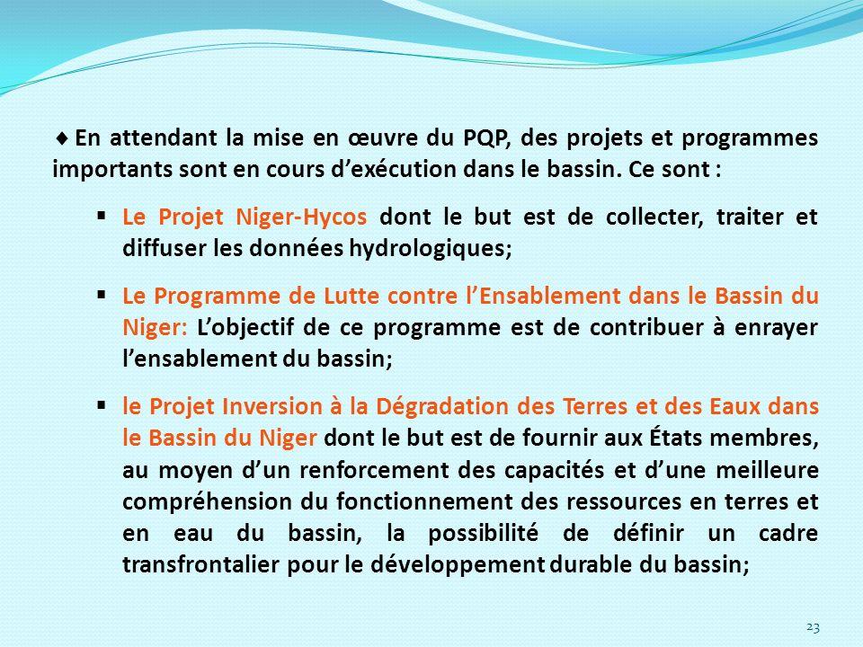 En attendant la mise en œuvre du PQP, des projets et programmes importants sont en cours d'exécution dans le bassin. Ce sont :