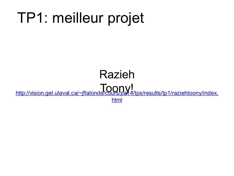 TP1: meilleur projet Razieh Toony!