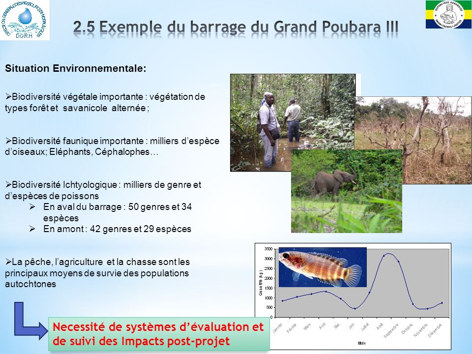 2.5 Exemple du barrage du Grand Poubara III