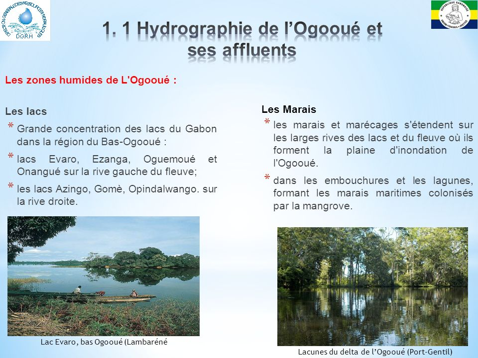 1. 1 Hydrographie de l'Ogooué et ses affluents