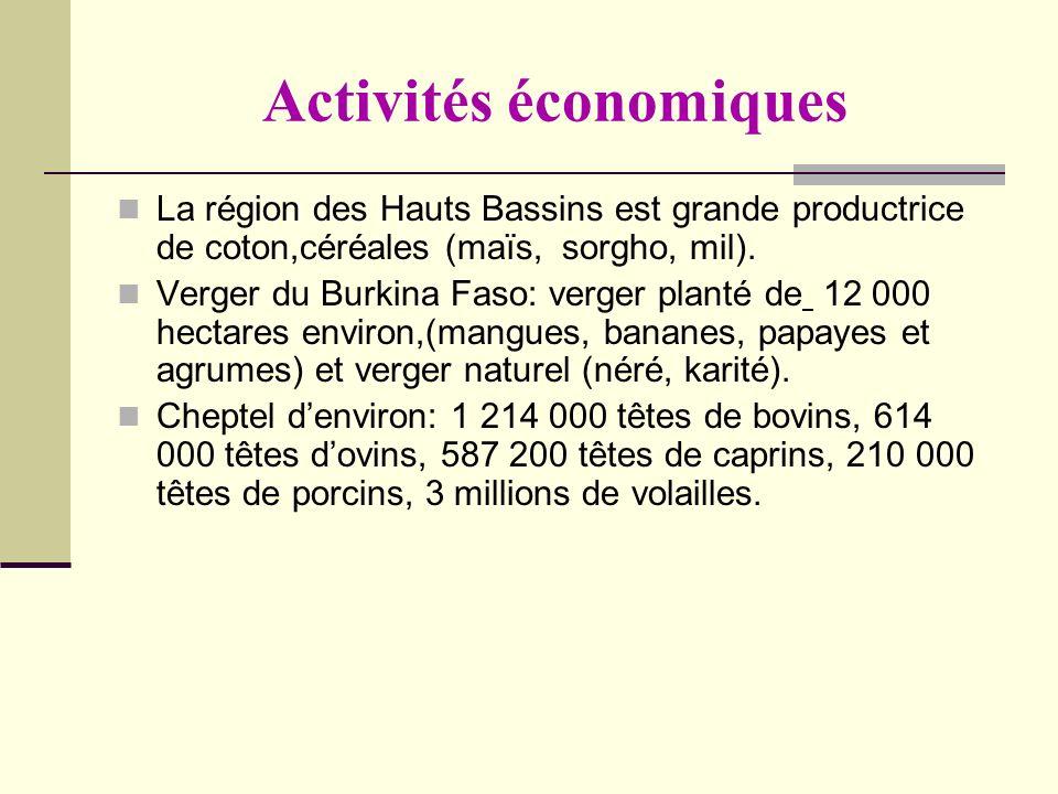 Activités économiques