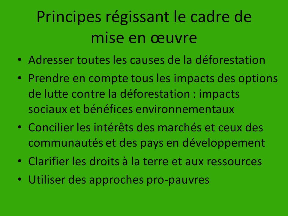Principes régissant le cadre de mise en œuvre