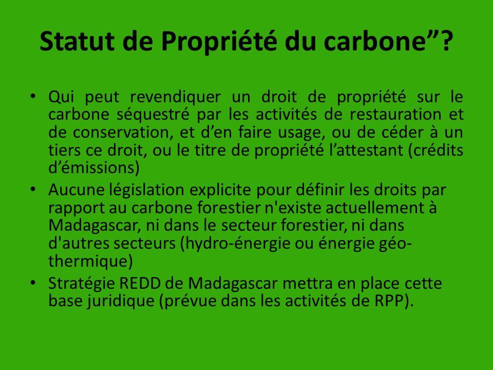 Statut de Propriété du carbone