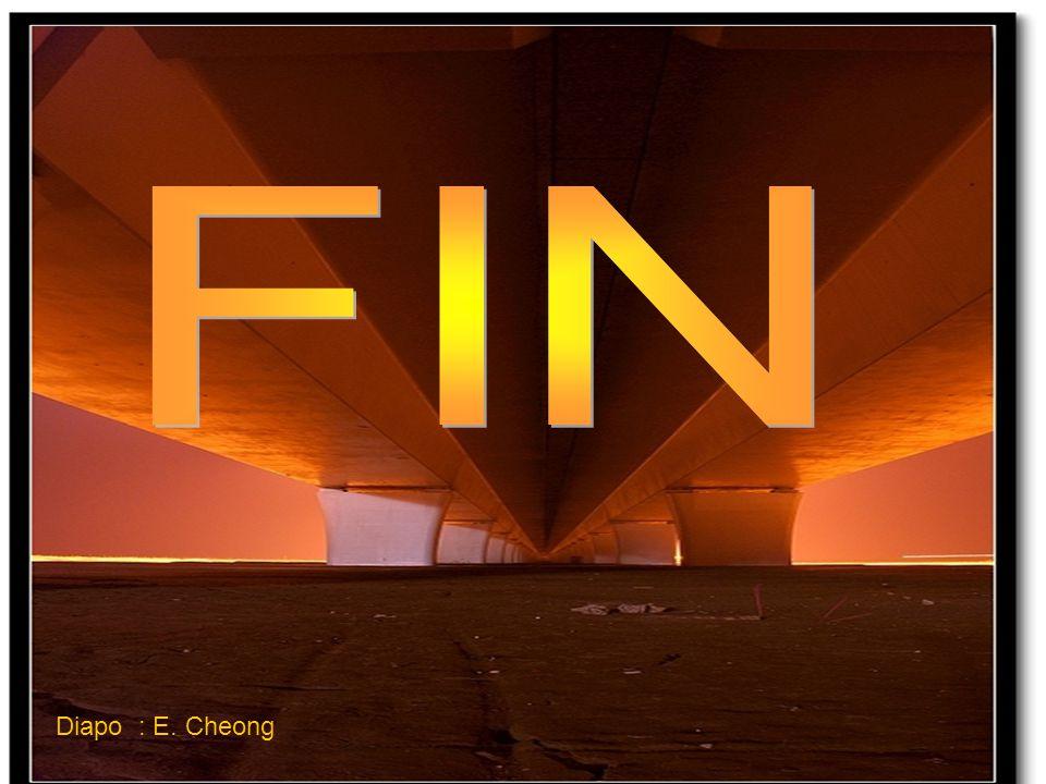 FIN Diapo : E. Cheong